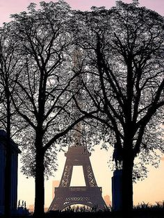 Eiffel Tower from the Place du Trocadero--saw this every morning on my old commute