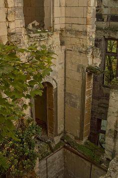 Chateau de la Mothe-Chandeniers parquait   von Infraredd