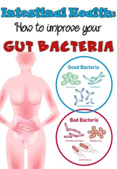 Intestinal Health: How To Improve Your Gut Bacteria | Ideal Beauty Guide