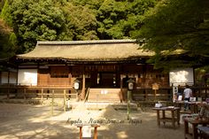 This structure was built around 1215, date derived from the annual tree rings in the wood used. In Japan, there aren't any Heian era (794~1192) houses remaining, but the Haiden is a good representation of Heian era's architecture. The shape of the roof is especially beautiful and impressive. Ujigami Shrine, Kamakura Period, Meiji Restoration, Heian Era, Tree Rings, Houses, Japan, Shape, Architecture