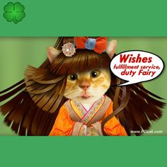 Goow luck nice greeting card, green lines for words, cat, cute, nice, wishes fairy