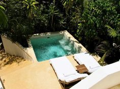Plunge Pool surrounded by jungle greenery.