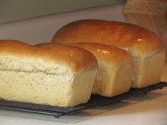 homemade sandwich wheat bread recipe