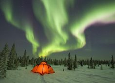 Who wants to go camping under the northern lights in Minnesota's Chippewa National Forest with me???