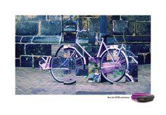 HMBR Bicycle Lock. The purple bike