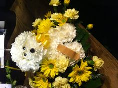 Get well doggie basket Get Well Gifts, Basket, Teddy Bear, Wellness, Toys, Animals, Activity Toys, Animales, Animaux