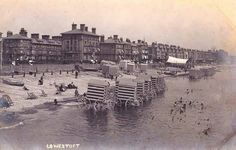 View of Wellington Gardens and the beach side of Victoria Terrace, possibly from Claremont Pier.