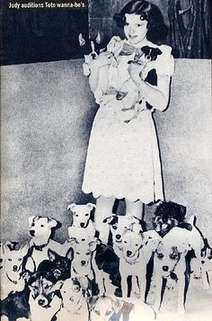 Judy Garland at the Toto audition for The Wizard of Oz (1939).