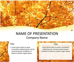 Beautiful PowerPoint template with colorful maple leaves in autumn. Use this theme for presentations on fall, seasons changes, weather, etc. Powerpoint Free, Company Names, Lorem Ipsum, Presentation, Maple Leaves, Templates, Backgrounds, Fall, Places
