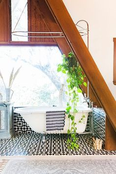 Bathroom Goals - Pinterest's Top New Home Trend: Shower Plants - Photos