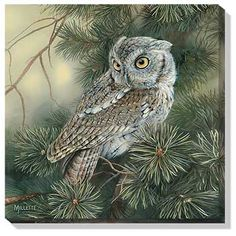 Wild Wings : Wildlife Art Prints, Lodge Decor and Rustic Home Furnishings : Wild Wings