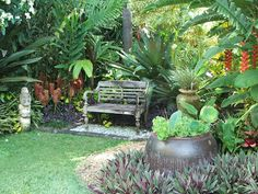Onslow and Miss B: Tropical paradise - Wonderful plant selection including beehive ginger, purple heart, bromeliads, lotus-filled pot and parrots beak heliconia.