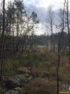 Hampsjön, number 151 on my list, 29.10.20