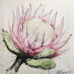 Maria M Art Watercolor And Ink, Watercolor Illustration, Watercolor Flowers, Watercolor Paintings, Botanical Drawings, Botanical Art, Protea Art, Abstract Flower Art, King Protea