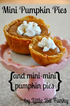 Little Bit Funky: what I made for monday - mini pumpkin pies - and mini mini pumpkin pies (Mini Pie Recipes) Mini Pumpkin Pies, Mini Apple Pies, Mini Pumpkins, Mini Pies, Pumpkin Pumpkin, Pumpkin Ideas, Mini Pie Recipes, Pumpkin Pie Recipes, Fall Recipes