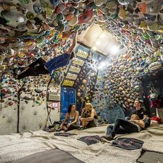 """see your garage climbing wall and raise you my friend and comp climber's garage climbing wall. """"I see your garage climbing wall and raise you"""".""""I see your garage climbing wall and raise you"""". Indoor Climbing Wall, Bouldering Wall, Climbing Holds, Rock Wall, Mountaineering, Climbers, Guide, The Great Outdoors, Garage"""