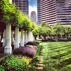 Downtown Cincinnati garden. I'd love to go here with my sketchpad and Prismacolor set on a warm afternoon...