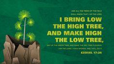 "Verse of the Day from Logos.com    에스겔 17:24, ""들의 모든 나무가 나 여호와는 높은 나무를 낮추고 낮은 나무를 높이며, 푸른 나무를 말리고 마른 나무를 무성하게 하는 줄 알리라."" ""나 여호와는 말하고 이루느니라."" 하라."