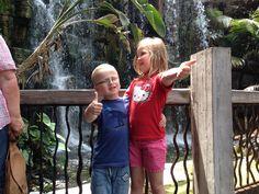 Wilma & Harry i regnskogen (Palma Aquarium)