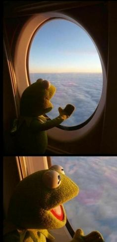 Funny pictures about Kermit has never been so happy. Oh, and cool pics about Kermit has never been so happy. Also, Kermit has never been so happy. Cartoon Wallpaper Iphone, Mood Wallpaper, Disney Wallpaper, Animes Wallpapers, Funny Wallpapers, Stupid Funny Memes, Funny Relatable Memes, Hilarious, Sapo Kermit