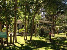 House design arquitecture nature