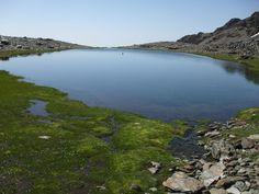 Laguna de Aguas Verdes