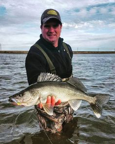 We recently posted a report from Jason Mitchell out on Devils Lake where he talked about how good the shore fishing is on Devils Lake right now. Here's some of the fruits of that bite!  #anglingbuzz #catchfishnow #devilslake #walleye #jasonmitchell #shorefishing #masterangler #catchandrelease #letthemgosotheycangrow #bigfish #fishing #catchoftheday