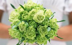 Bouquet Composed Entirely Of Green Rose Flowers & Dark Green Foliage. Peach Flowers, All Flowers, Bridal Flowers, Amazing Flowers, Flowers Pics, Wedding Arrangements, Wedding Bouquets, Flower Arrangements, Hand Bouquet