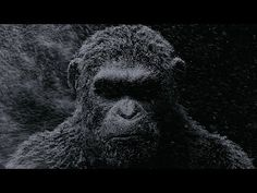 """Andy Serkis """"deserves an Academy Award,"""" declared Matt Reeves tonight at a special War for the Planet of the Apes presentation at New York Comic-Con. """"He's an incredible, incredible actor,"""" added t… Film 2017, Dawn Of The Planet, Planet Of The Apes, New Trailers, Movie Trailers, Teaser, Maze Runner, Matt Reeves, Motion Poster"""