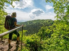 Quer durch den Naturpark Schwarzwald auf dem Schluchtensteig. So schön ist die Natur in den Schluchten und so abwechslungsreich sind die Wege, Wanderungen und Aussichtspunkte.