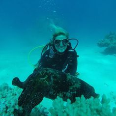 Happy #earthday! In this pic one of my fave places to be on earth: under water. Almost 85% of the Great Barrier Reef is already damaged due to coral bleaching. We need to take care of our planet before animals like this cuttlefish have no more places to live.  #cuttlefish #greatbarrierreef #scuba #oceanbaby by sabrinwonderland http://ift.tt/1UokkV2