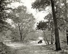 "Washington, D.C., circa 1906. ""The Fords, Rock Creek, zoo park."""