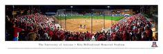 University of Arizona Wildcats Rita Hillenbrand Memorial Stadium Panoramic $29.95