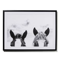 Horse Photographic Print Two
