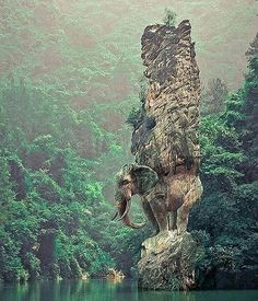 Follow @awesome.pix for more amazing photos @awesome.pix  Elephant Rock, China, photo by Marcel Laverted