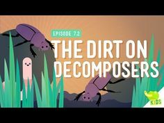 The Dirt on Decomposers: Crash Course Kids #7.2 We've talked about food chains and how energy moves through an ecosystem, but let's take a step back and see how everything starts… and ends. Decomposers! By: Crash Course Kids. Support at: http://patreon.com/crashcourse