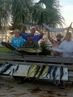 1000 images about just a few salty dog fishing memories for Gulf shores alabama fishing charters