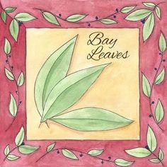 How to Grow Bay Leaf
