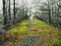 Spook Bridge - Valdosta, GA