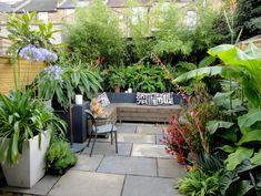 Small Tropical Gardens, Small Courtyard Gardens, Small Backyard Gardens, Small Backyard Landscaping, Backyard Ideas, Plants For Small Gardens, Balcony Gardening, Urban Gardening, Small Garden Landscape