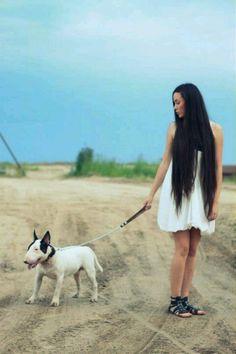 12 mejores imágenes de Bull rriers   Bull terrier, Perros, Memes ...