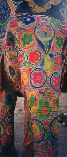 Indian Elephant painted during Hindu Festival in India Elephant Head, Indian Elephant, Elephant Love, Painted Elephants, Elephants Never Forget, Indian Festivals, Watercolor Animals, My Animal, Beautiful Creatures