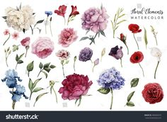 https://image.shutterstock.com/z/stock-photo-flowers-and-leaves-watercolor-can-be-used-as-greeting-card-invitation-card-for-wedding-birthday-406094473.jpg