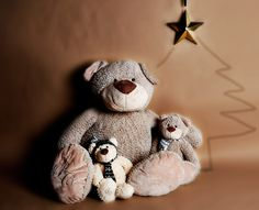 Cuddly stuffed bears from Paul Costelloe Living, available exclusively at Dunnes Stores Home Collections, Bears, Christmas, Gifts, Design, Decor, Xmas, Presents, Decoration