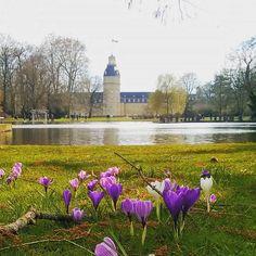 Und schon ist wieder #Sonntag Abend... hattet ihr ein schönes #Wochenende?  #visitkarlsruhe #karlsruhe #visitbawu #bwjetzt #joingermantradition #igersoftheday #instalike #schloss #castle #lake #garden #park #flowergram #sunday #travel #placetobw #germany #bestoftheday #picture #naturelovers #love