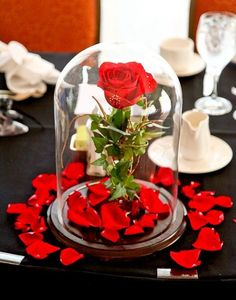 Domed glass with a floating red rose on a base of petals. Beauty and the beast style simplicity
