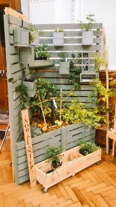 Vertical garden ideal for a small space. planters slot into the fence.