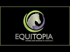 Top 6 Signs Your Saddle is Hurting Your #Horse - by Equitopia demonstrated by Jochen Schleese - YouTube