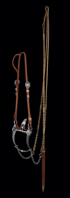 Dale Harwood 2008 Gear ~ TCAA - The accompanying bridle includes a silver-mounted split-ear headstall and bit both fabricated and engraved by Harwood as well as a set of rawhide reins and romal by Nate Wald with Harwood popper. Braided in a California style, the reins and romal are 16-plait.