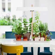Grow Light by Kekkilä | MONOQI #bestofdesign